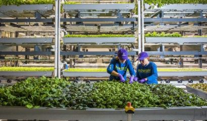 forbes-top-50-agtech-companies-in-the-world